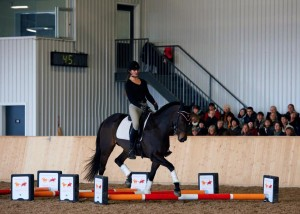 Linnea_Ingrid Klimke Clinic dec 2015 b